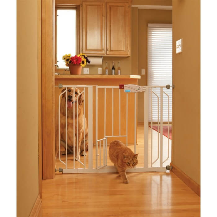 Carlson Extra Tall Gate With Pet Door Door Ideas Themiraclez