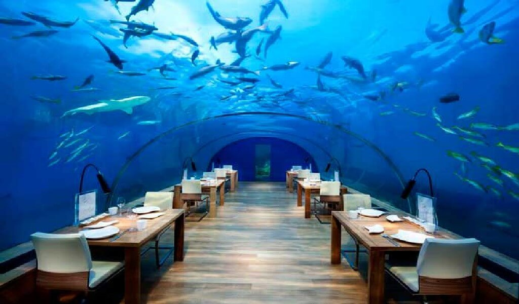 Most Expensive Restaurant in the World 7 - Most Expensive Restaurant in the World