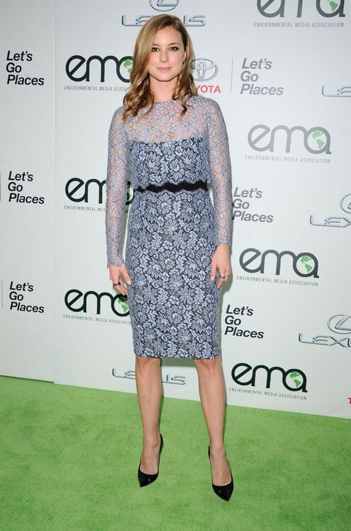 awards 13 - Emily VanCamp Net Worth