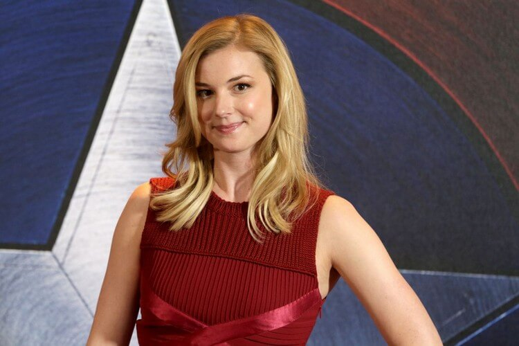 income sources 10 - Emily VanCamp Net Worth