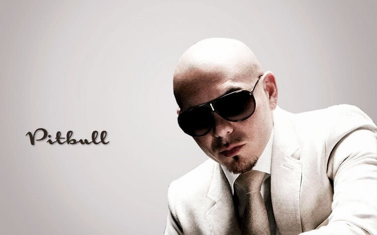 bio 1 7 - Pitbull Net Worth