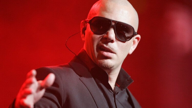 bio 2 8 - Pitbull Net Worth