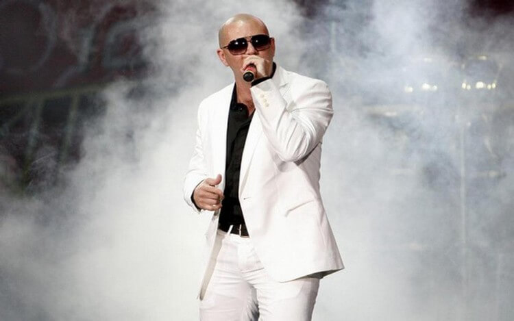 income 7 - Pitbull Net Worth