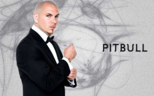 intro 10 300x188 - Pitbull Net Worth