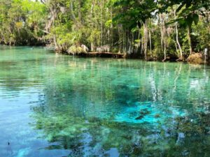 Crystal River Florida 300x225 - Best Places for Swimming in the World -- Natural Pools