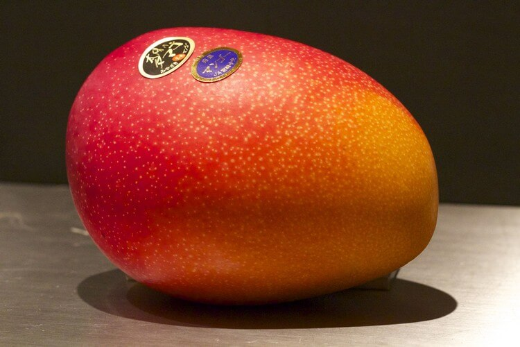 Egg of the Sun Mangoes - Most Expensive Fruits in the World: Best Fruits to Eat