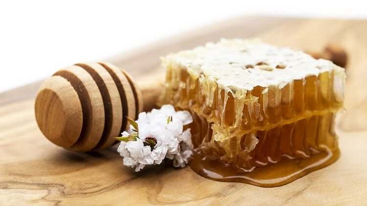 Manuka Honey - Top Most Expensive Honey in the World 2018: Best Honey in the World