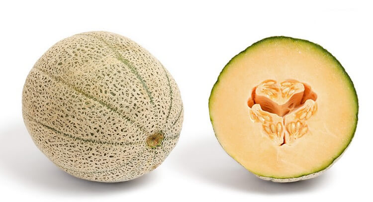 Yubari King Melons - Most Expensive Fruits in the World: Best Fruits to Eat