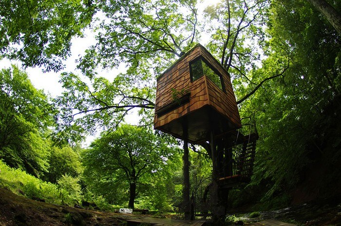 coolest treehouses 12 - Coolest Treehouse in the World for Kids -- Innovative Ideas