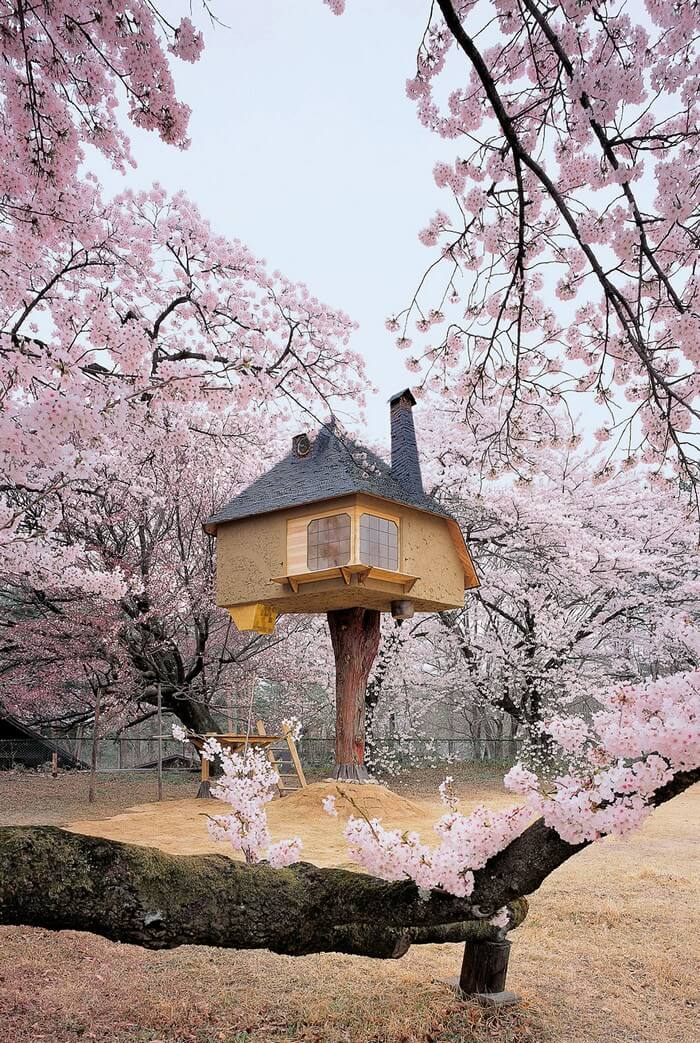 coolest treehouses 8 - Coolest Treehouse in the World for Kids -- Innovative Ideas