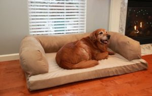 Beasley's Couch Dog Bed 300x190 - Best Dog Beds -- Complete Guide to Best Selling Dog Beds