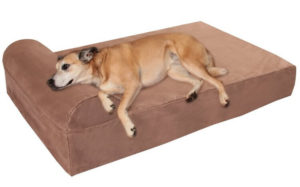 "Big Barker 7"" Pillow Top Orthopedic Dog Bed 300x187 - Best Dog Beds -- Complete Guide to Best Selling Dog Beds"
