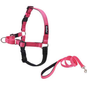 Expawlorer Soft Reflective Harness 300x300 - Best Dog Harness - Best No Pull Dog Harness Reviews