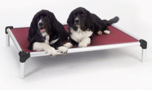 Kuranda Chewproof PVC Dog Bed 300x178 - Best Dog Beds -- Complete Guide to Best Selling Dog Beds