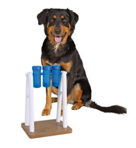 Mad Scientist Puzzle 275x300 - Complete Guide for Best Dog Interactive Toys