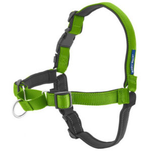 PetSafe Easy Walk 300x300 - Best Dog Harness - Best No Pull Dog Harness Reviews