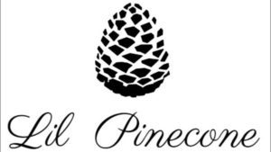 Pinecone 300x169 - Top 10 Best Survey Websites in the World