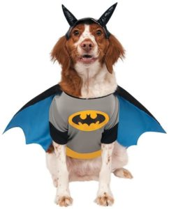 DC Heroes Pet Costume by Rubie's 242x300 - Designer Dog Clothing - Complet Reviews for Best Dog Outfits