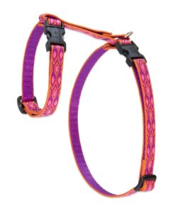 LupinePet Originals H Style Harness 244x300 - Cat Harness Reviews - Full Guide for Best Cat Harness