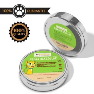 Pet Gallo 300x300 - Complete Guide for Best Flea Collar for Cats