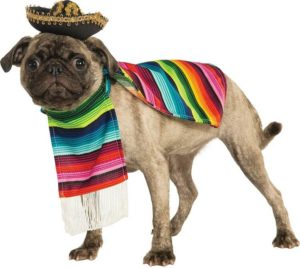 Pet Mexican Poncho by Rubie's 300x268 - Designer Dog Clothing - Complet Reviews for Best Dog Outfits