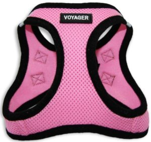 Pet Supplies Voyager All Season Pet Harness 300x283 - Cat Harness Reviews - Full Guide for Best Cat Harness