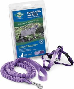 PetSafe Me Kitty Harness 252x300 - Cat Harness Reviews - Full Guide for Best Cat Harness