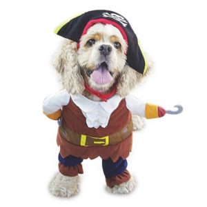 Pirates of the Caribbean Pet Dog Costume by NACOCO 300x300 - Designer Dog Clothing - Complet Reviews for Best Dog Outfits