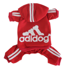 Scheppend Adidog Hoodie 278x300 - Best Dog Sweaters - Complete Guide for Large Dog Sweaters