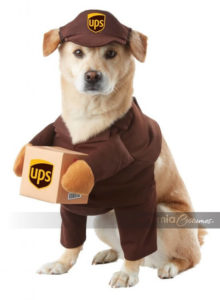 UPS Pal Pet Costume by California Costumes 220x300 - Designer Dog Clothing - Complet Reviews for Best Dog Outfits
