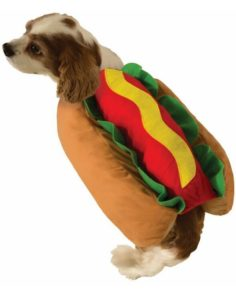 Weiner Bun Halloween Pet Costume by Forum Novelties 236x300 - Designer Dog Clothing - Complet Reviews for Best Dog Outfits