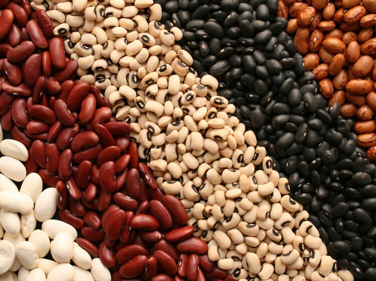 Beans 2 - Top 10 Most Nutritious Foods in the World